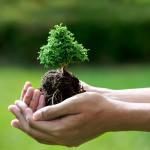 5 biện pháp bảo vệ môi trường