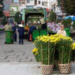 Hoa tươi thành rác thải