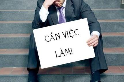 sinh vien can viec lam