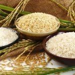 Chế biến gạo