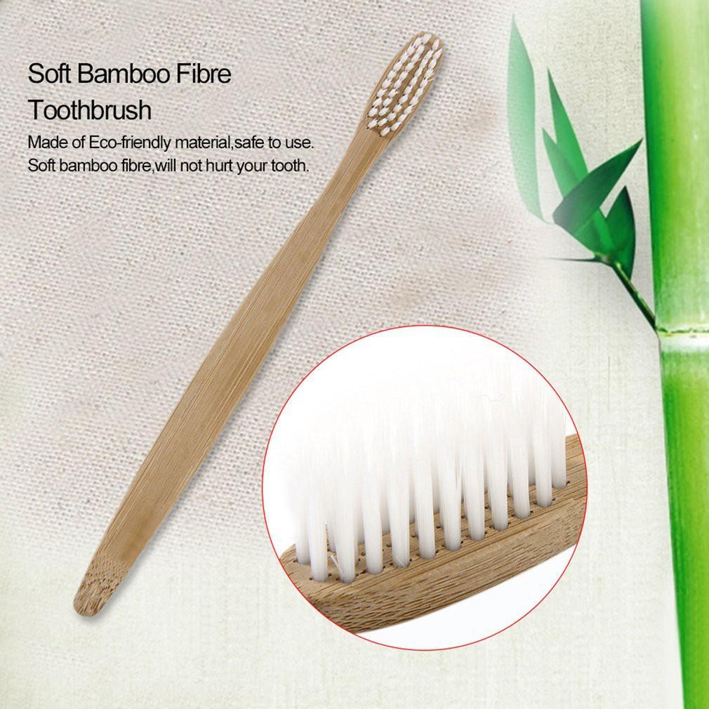 Thu hút du khách bằng bàn chải đánh răng thân thiện môi trường