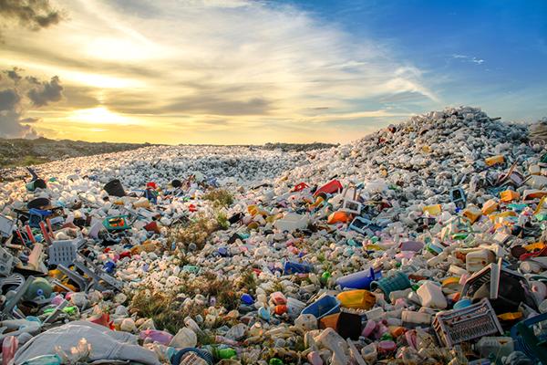 Tình trạng xả rác tại nông thôn hiện nay